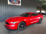 2019 Ford Mustang (red)